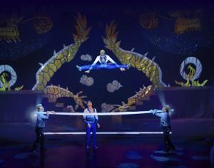 Cirque Shanghai Chinese Flex Bar