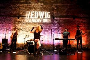 Hedwig_Band_1